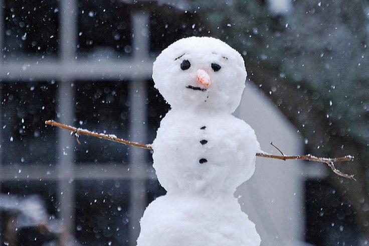 Snowman - Flickr CC Melinda Shelton.jpg